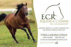 ECR_Banner_2012