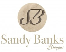 Sandy-Banks-Logo