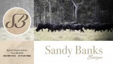 Sandy-Banks-banner