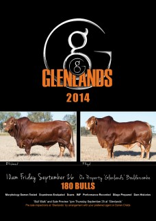 Glenlands-Brochure_2014