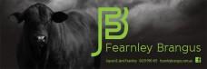 Fearnley_Banner_1