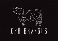 CPR-Brangus_Logo