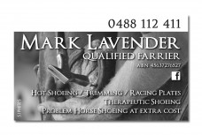 Mark-Lavender-Business-Card