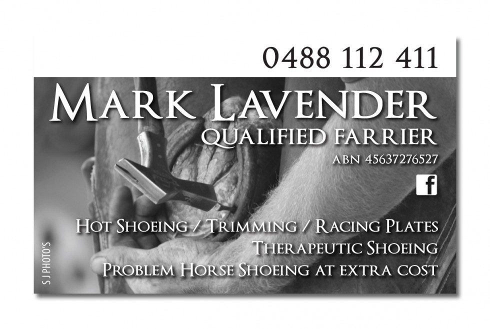 Mark Lavender Business Card | Rural Design Studio