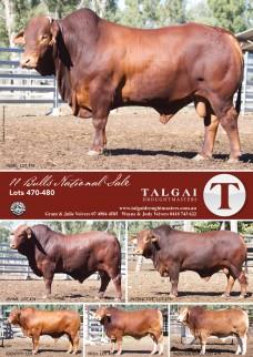 Talgai_Digest_August_2015